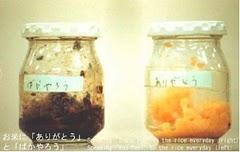 Emoto Rice Experiment